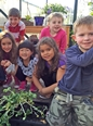 Kindergarten students observe the plant they are growing in the greenhouse.